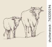 cow and a calf walk along the... | Shutterstock .eps vector #763200196
