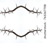 The Pattern Of The Branch Of...