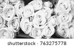 roses in black and white | Shutterstock . vector #763275778