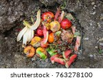 Small photo of Domestic waste for compost from fruits and vegetables in garden.