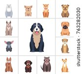 set of happy doggies portraits  ... | Shutterstock .eps vector #763282030