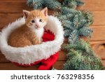 ginger kitten in santa hat... | Shutterstock . vector #763298356