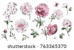 set watercolor elements of... | Shutterstock . vector #763365370
