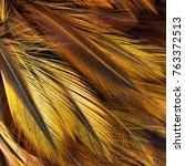 Bird Feather Pattern For...