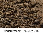 excrements of eastern black... | Shutterstock . vector #763375048