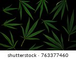leaves of cannabis plant... | Shutterstock . vector #763377460