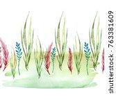 watercolor drawing of seaweed ... | Shutterstock . vector #763381609