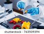 quality control food safety... | Shutterstock . vector #763509394