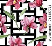 wildflower orchid flower... | Shutterstock . vector #763557736