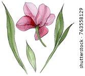 wildflower orchid flower in a... | Shutterstock . vector #763558129