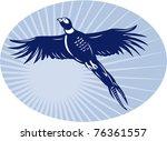 vector illustration of a Pheasant bird flying up with sunburst in background set inside ova
