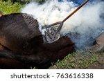 branding a young steer or cow... | Shutterstock . vector #763616338