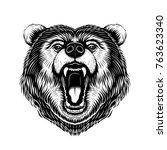 vector black and white bear... | Shutterstock .eps vector #763623340