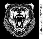 vector black and white bear... | Shutterstock .eps vector #763623343