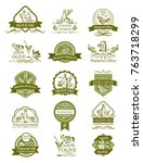 olive oil icons of green and... | Shutterstock .eps vector #763718299