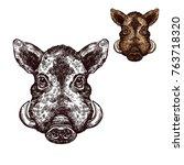 boar wild animal sketch vector... | Shutterstock .eps vector #763718320