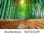 bamboo forest in kyoto  japan. | Shutterstock . vector #763721149