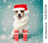 Happy Dog In Christmas Hat. Pet ...