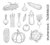 vegetables sketch icons and... | Shutterstock .eps vector #763848610