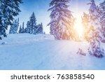 forest pine trees in winter... | Shutterstock . vector #763858540