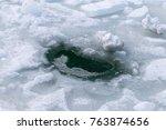 frozen coast sea in winter.... | Shutterstock . vector #763874656