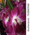 thai orchids in fresh flowers... | Shutterstock . vector #763883968