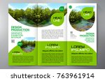 business brochure. flyer design.... | Shutterstock .eps vector #763961914