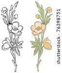 wildflower   raster version | Shutterstock . vector #76398751
