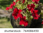 brightly red cone shaped... | Shutterstock . vector #764086450