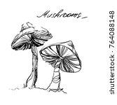 ink drawn mushrooms for...   Shutterstock .eps vector #764088148