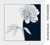 vector peony flower with space... | Shutterstock .eps vector #764146030
