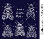 hand drawn moth set. chalk hand ... | Shutterstock .eps vector #764155039