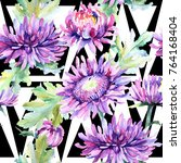 wildflower chrysanthemum flower ... | Shutterstock . vector #764168404