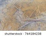Small photo of Sulphur sediment in a sulphurous spring