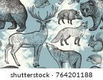 Stock vector forest animals and trees seamless pattern squirrel deer bear wolf fox hedgehog wild boar and 764201188