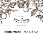 vintage frame with ripe fruits... | Shutterstock .eps vector #764216764