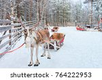 reindeer with sledge in winter... | Shutterstock . vector #764222953