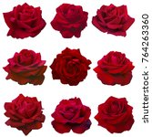 collage of red roses isolated... | Shutterstock . vector #764263360