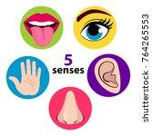 set of five human senses ... | Shutterstock .eps vector #764265553