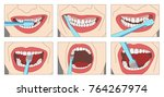 how to properly brush your... | Shutterstock .eps vector #764267974