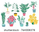 decoration indoor plants and... | Shutterstock .eps vector #764308378