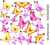 beautiful pink butterflies ... | Shutterstock .eps vector #764363560