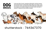 horizontal banner with dogs of... | Shutterstock .eps vector #764367370