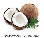coconuts with leaves on a white ... | Shutterstock . vector #764526064