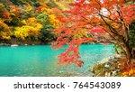 arashiyama in autumn season... | Shutterstock . vector #764543089