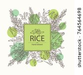 background with rice. vector... | Shutterstock .eps vector #764564698