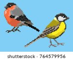 pixelated titmouse and... | Shutterstock .eps vector #764579956