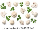 mushrooms with parsley isolated ... | Shutterstock . vector #764582560