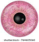pink eye iris isolated on white ...   Shutterstock .eps vector #764605060