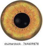 werewolf's eye iris    vector | Shutterstock .eps vector #764609878